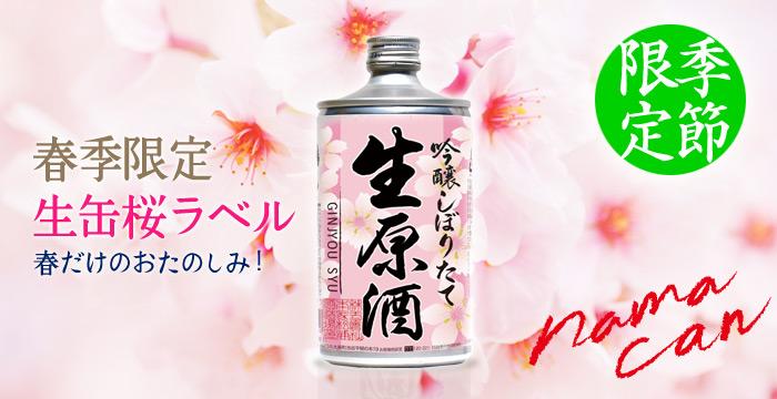 生缶 桜ラベル