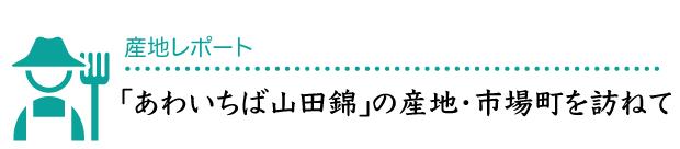 あわいちば山田錦